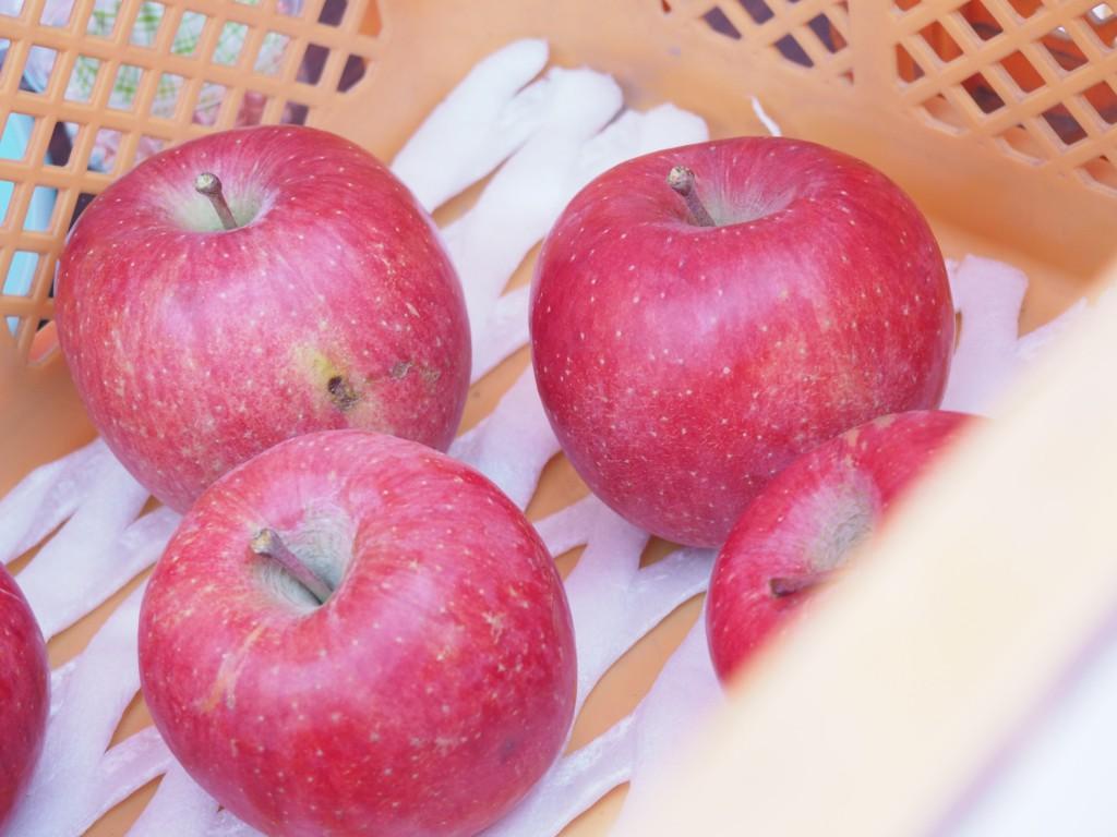 彩有機肥料を使ったりんご