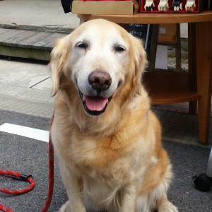 good smile!